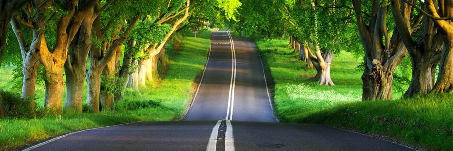 road1(2)